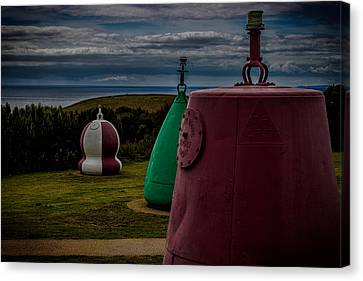 Bouy's Lizard Lighthouse Canvas Print by Martin Newman