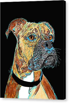 Boxer - Bud Canvas Print by Bert Hornbeck