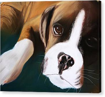 Boxer Canvas Print by Michele Turney