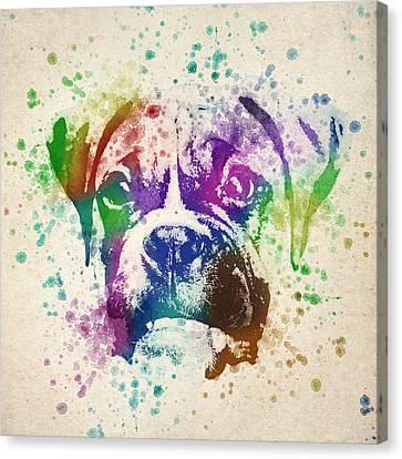 Boxer Splash Canvas Print by Aged Pixel