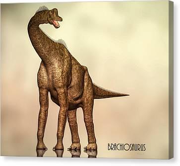 Brachiosaurus Dinosaur Canvas Print by Bob Orsillo