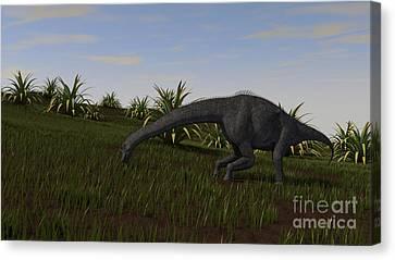 Brachiosaurus Grazing In A Grassy Field Canvas Print by Kostyantyn Ivanyshen