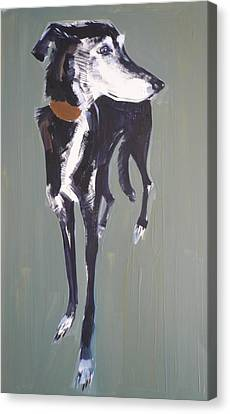 Bradley Lurcher, 2011 Oil On Paper Canvas Print by Sally Muir