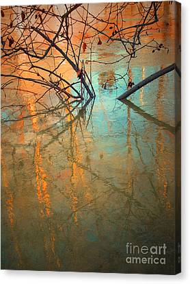 Branches And Ice Canvas Print by Tara Turner