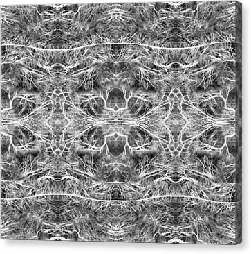 Branches Pattern Canvas Print by Florin Birjoveanu