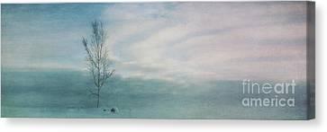 Brave The Black Frost Canvas Print by Priska Wettstein