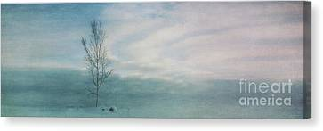 Brave The Black Frost Canvas Print by Priska Wettstein