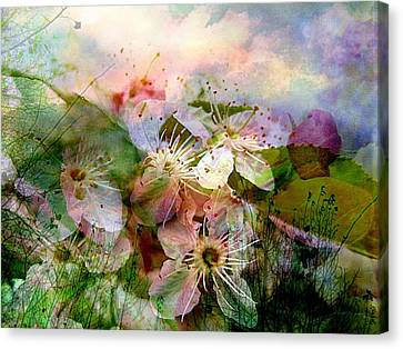 Breath Of Spring Canvas Print by Shirley Sirois