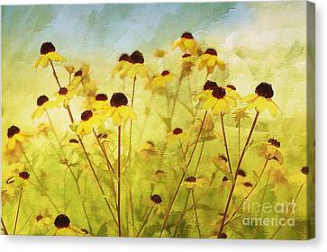 Breeze Canvas Print by Elaine Manley