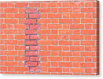Brick Wall Repair Canvas Print by Tom Gowanlock