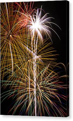 Bright Bursts Of Fireworks Canvas Print by Garry Gay