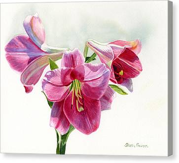 Bright Rose Colored Lilies Canvas Print by Sharon Freeman