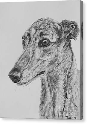 Brindle Greyhound Face In Profile Canvas Print by Kate Sumners