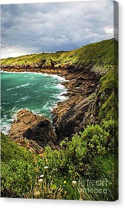 Brittany Coast Canvas Print by Elena Elisseeva