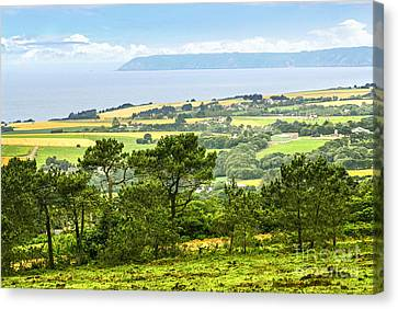 Brittany Landscape With Ocean View Canvas Print by Elena Elisseeva