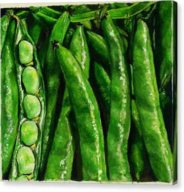 Broad Beans Canvas Print by Arual Jay
