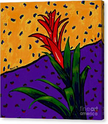 Bromeliad Canvas Print by Dale Moses