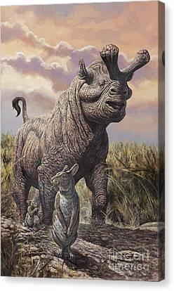 Brontops And Palaeolagus Rabbit Canvas Print by Mark Hallett