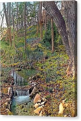 Brook Canvas Print by Terry Reynoldson