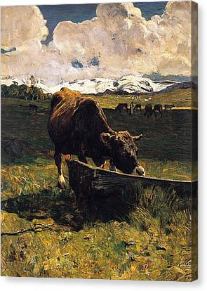 Brown Cow At Trough  Canvas Print by Giovanni Segantini