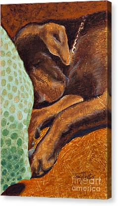Brown Dog Canvas Print by Tracy L Teeter