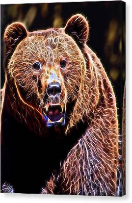 Brown Grizzly Canvas Print by Daniel Hagerman