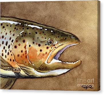 Brown Trout Canvas Print by David Rogers