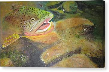 Brown Trout   Canvas Print by Ordy Duker