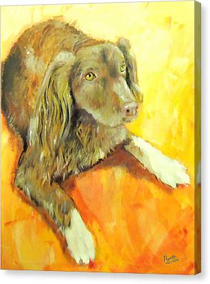 Brownie Canvas Print by Marcello Cicchini