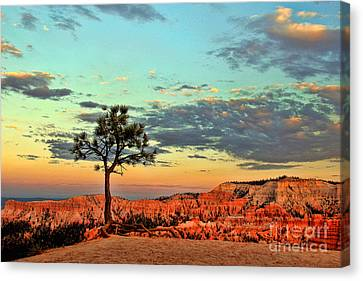Bryce Canyon Canvas Print by Leslie Kirk
