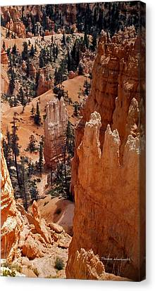 Bryce Canyon National Park 2 Canvas Print by Thomas Woolworth