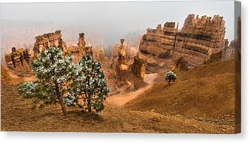 Bryce Canyon National Park Canvas Print by Larry Marshall