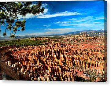 Bryce Canvas Print by Robert Bales