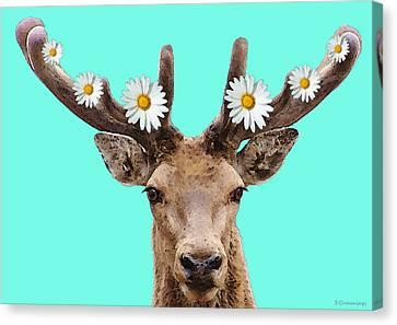 Buck Deer Art - Dont Shoot Canvas Print by Sharon Cummings