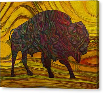 Buffalo Canvas Print by Jack Zulli
