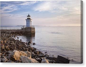 Bug Light Canvas Print by Eric Gendron