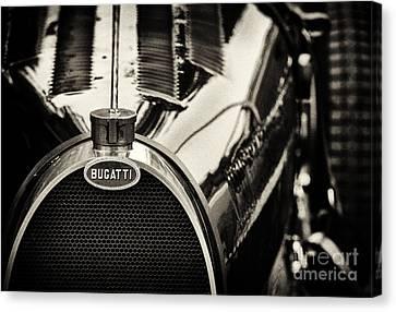 Bugatti Type 35 Canvas Print by Tim Gainey