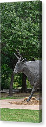 Bull Market Quadriptych 1 Of 4 Canvas Print by Christine Till