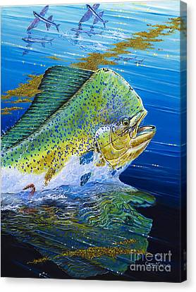 Bull Reflection Off0032 Canvas Print by Carey Chen