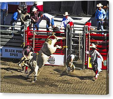 Bull Riding Canvas Print by Ron Roberts
