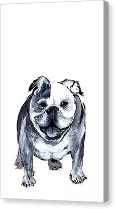 Bulldog  Canvas Print by Barbara Marcus