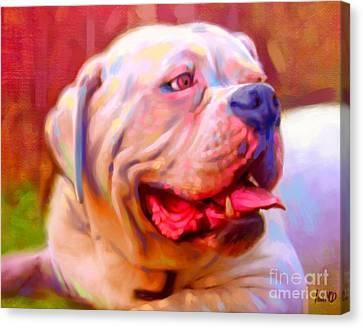 Bulldog Portrait Canvas Print by Iain McDonald