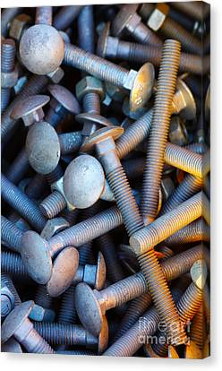 Bunch Of Screws Canvas Print by Carlos Caetano