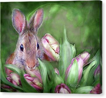 Bunny In The Tulips Canvas Print by Carol Cavalaris