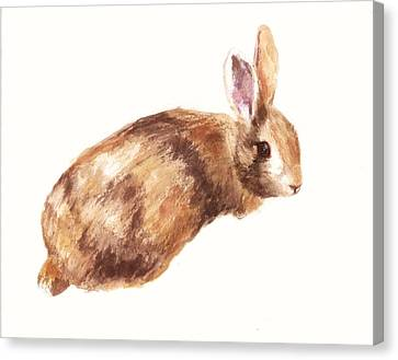 Bunny Print - Coffee And Cream Canvas Print by Alison Fennell