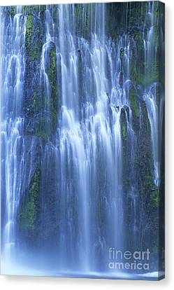 Burney Falls Mist Mcarthur Burney Sp California  Canvas Print by Dave Welling
