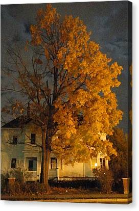 Burning Leaves At Night Canvas Print by Guy Ricketts