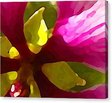 Burst Of Spring Canvas Print by Amy Vangsgard