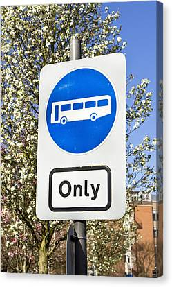 Bus Only Canvas Print by Tom Gowanlock