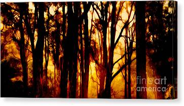 Bushfire Canvas Print by Phill Petrovic